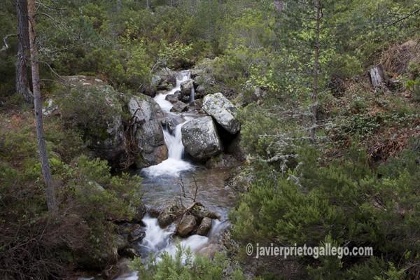 Cascadas del río Duero muy cerca de su nacimiento © Javier Prieto Gallego.