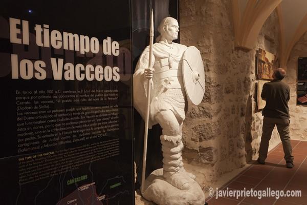 Una sala del Museo del Cerrato. El Cerrato Castellano. Castilla y León. España © Javier Prieto Gallego