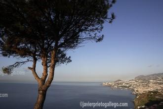 Funchal se recuesta sobre la ladera de una montaña frente al Atlántico. Bahía de Funchal. Madeira. Portugal. © Javier Prieto Gallego