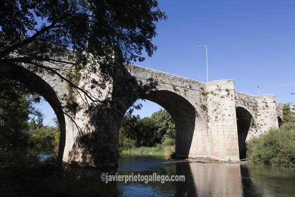 Puente renacentista sobre el Duero entre Olivares de Duero y Quintanilla de Onésimo. Canal del Duero. Valladolid. Castilla y León. España. © Javier Prieto Gallego