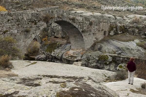 Puente medieval de La Puente sobre el río Alberche, cerca del Pinar de Hoyocasero. Localidad de Hoyocasero. Sierra de Gredos. Ávila. Castilla y León. España. © Javier Prieto Gallego