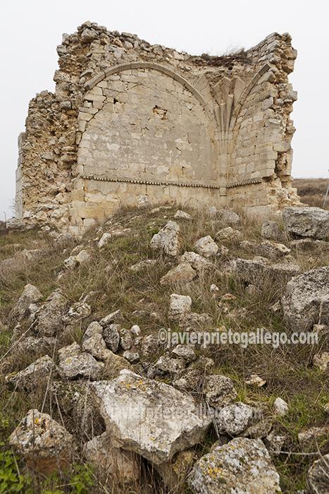 Restos del priorato de la Granja o de la Quinta, cerca de Valbuena de Pisuerga. Cerrato palentino. Palencia. Castilla y León. España. © Javier Prieto Gallego