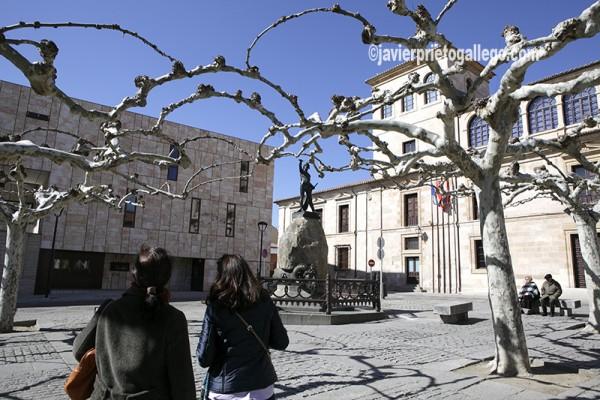 Plaza de Viriato. Zamora. Castilla y León. España © Javier Prieto Gallego