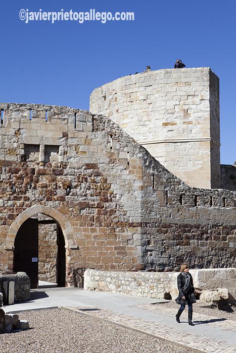 Castillo de Zamora. Siglo XI. Castilla y León. España © Javier Prieto Gallego