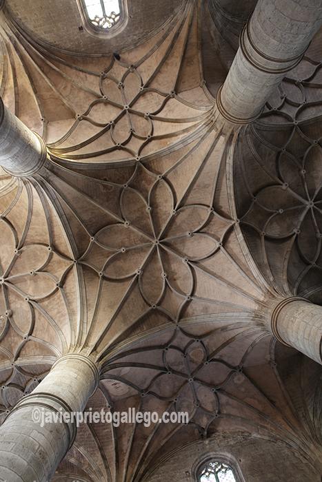 Bóvedas de crucería de la ex-colegiata de Santa María del Mercado. Berlanga de Duero. Soria. Castilla y León. España. © Javier Prieto Gallego