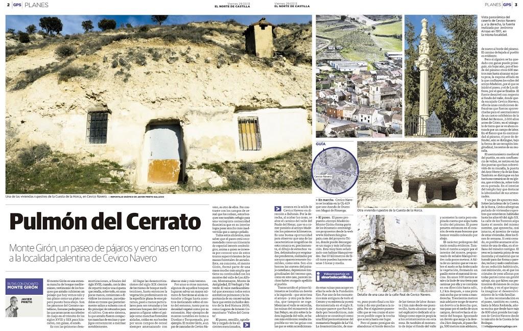 130329-Cevico-Navero