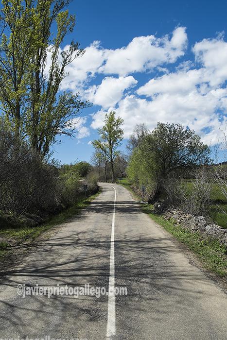 Carretera que une Robleda y El Puente. Comarca de Sanabria. Zamora. Castilla y León. España ©Javier Prieto Gallego