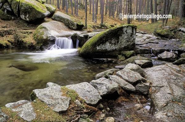 El río Eresma desciende por las laderas de la Sierra de Guadarrama hacia Segovia. Segovia. Castilla y León. España. © Javier Prieto Gallego