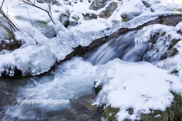 Imagen invernal de uno de los arroyos que descienden por la cara norte de la Sierra de Guadarrama Segovia. Castilla y León. España. © Javier Prieto Gallego