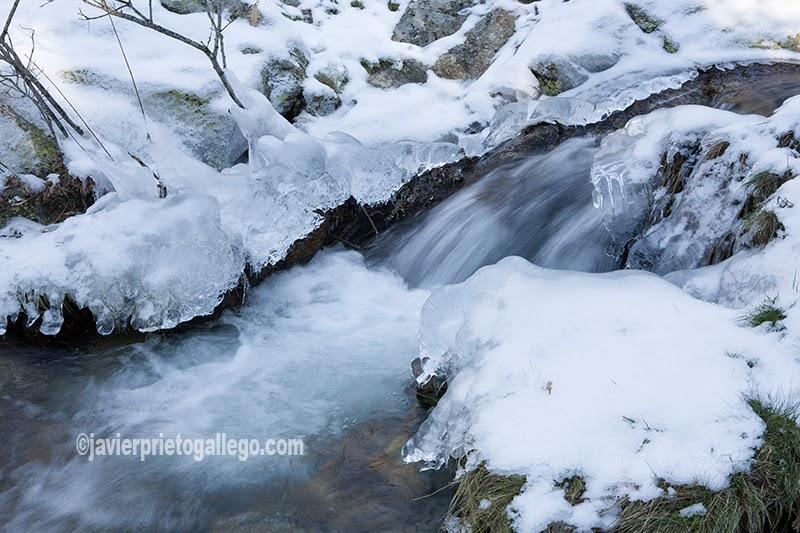 Imagen invernal de uno de los arroyos que descienden por la cara norte de la Sierra de Guadarrama Segovia. Castilla y León. España
