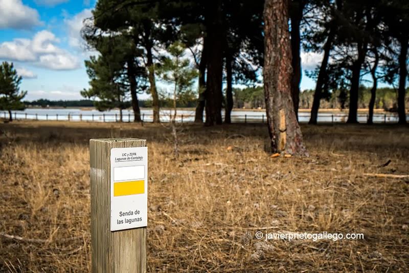 Una senda rodea la laguna de Sotillos Bajeros. Espacio natural de las Lagunas de Cantalejo. Segovia. Castilla y León. España © Javier Prieto Gallego