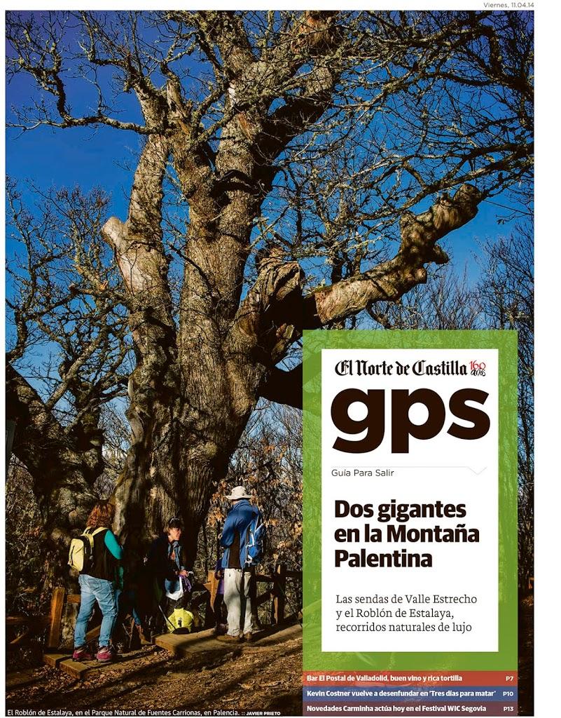 Reportaje publicado por Javier Prieto Gallego sobre el Roblón de Estalaya y el Gigante del valle Estrecho en el periódico EL NORTE DE CASTILLA