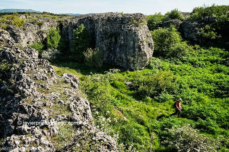 Efectos de la erosión en el Monumento Natural de Las Tuerces. Palencia. Castilla y León. España. © Javier Prieto Gallego