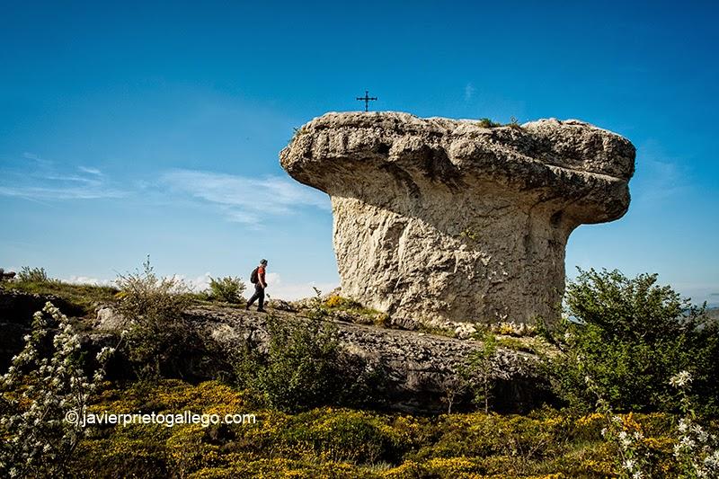 Peña Mesa (1.071 m) es la máxima altitud de Las Tuerces. Su forma tan más característica la convierte en un auténtico emblema de este espacio. Monumento Natural de Las Tuerces. Palencia. Castilla y León. España. © Javier Prieto Gallego
