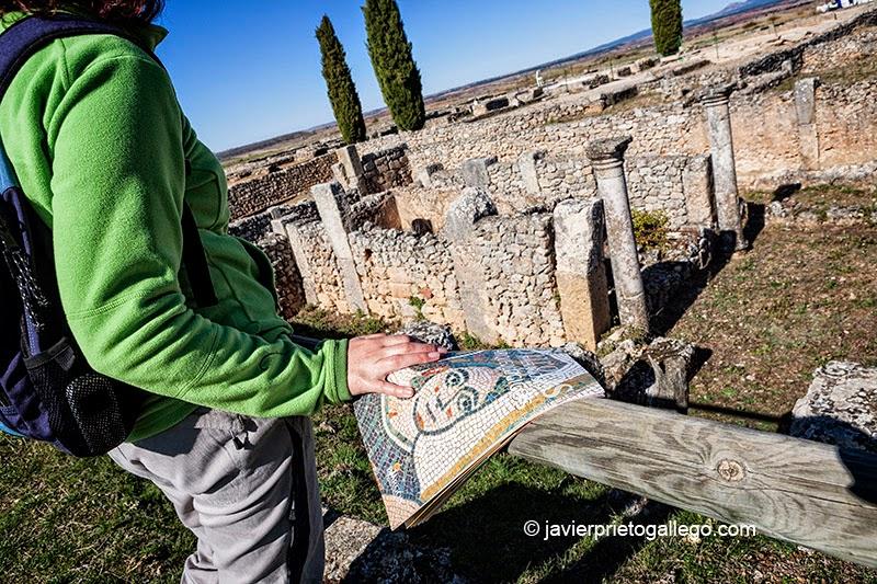 Una visitante contempla los restos de la Casa 1 en el yacimiento arqueológico de Clunia. Ribera del Duero. Burgos. Castilla y León. España. © Javier Prieto Gallego