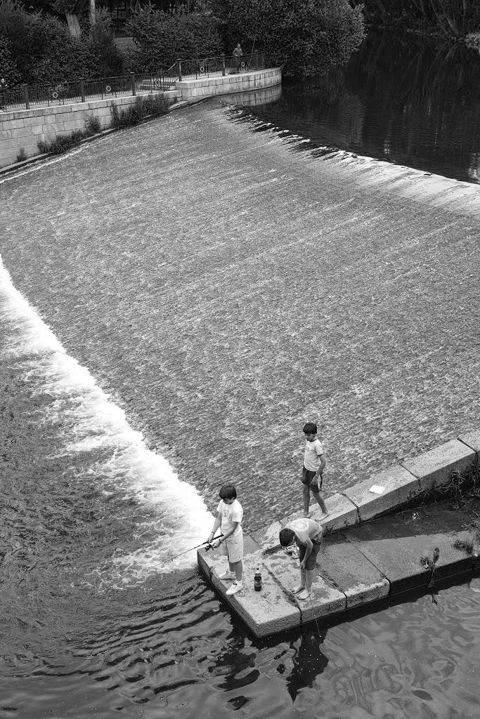 Unos niños pescan en la presa de La Moneda. Junto al Paseo junto a las orillas del Eresma. Segovia. Castilla y León. España. © Javier Prieto Gallego;