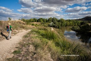 De Valbuena a San Bernardo por la orilla del Duero (Valladolid)