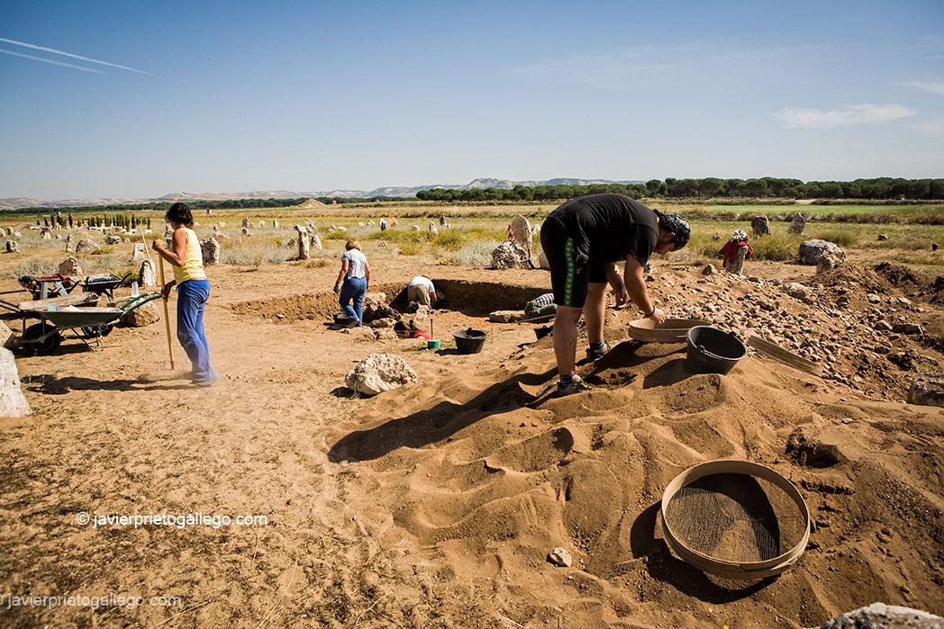 Necrópolis de Las Ruedas en el yacimiento arqueológico de Pintia.  Valladolid. Castilla y León. España. 2006 © Javier Prieto Gallego;