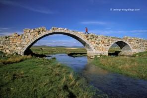 El puente de Las Merinas (Segovia)