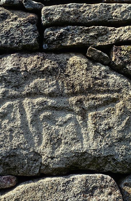 Petroglifos en las murallas del castro vetón de Yecla La Vieja. Salamanca. Castilla y León. España © Javier Prieto Gallego
