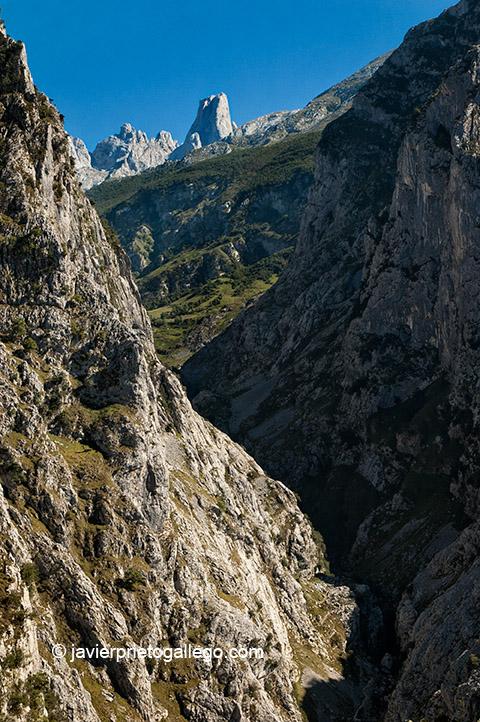 Vista del Naranjo de Bulnes desde el mirador de Camarmeña. Picos de Europa. Asturias. © Javier Prieto Gallego;