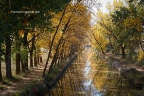 RUTA 11: El Canal de Castilla (Valladolid)