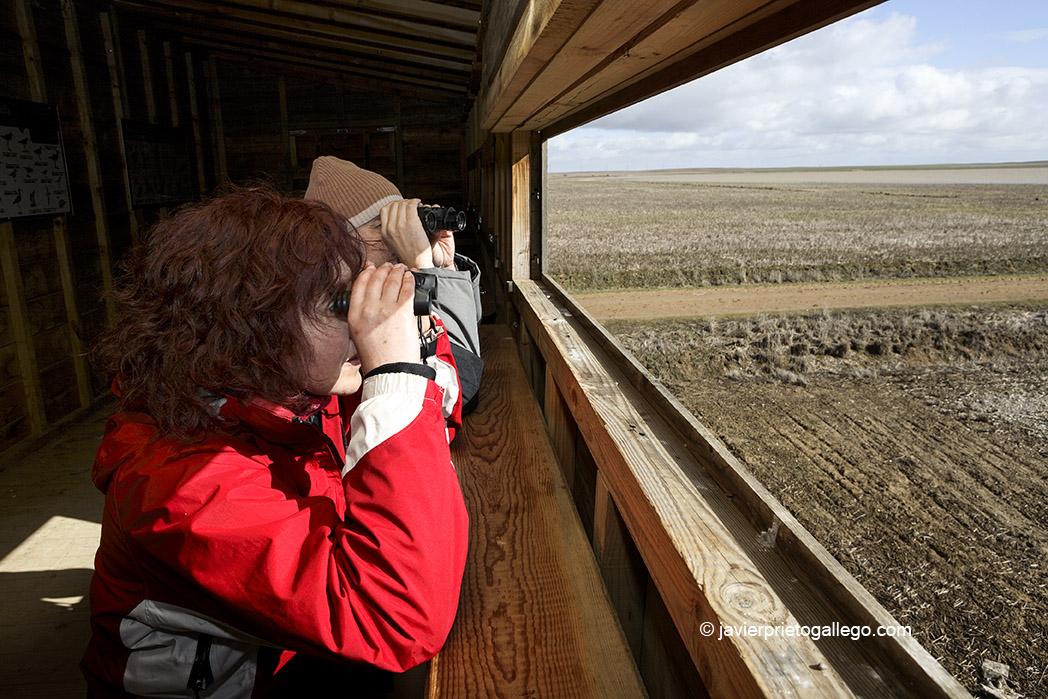 Observatorio ornitológico en la laguna de Boada de Campos. Tierra de Campos. Palencia. Castilla y León. España © Javier Prieto Gallego