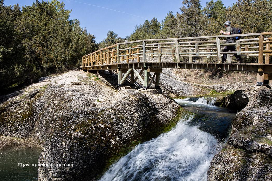 Arroyo de la Hoz. Monumento natural de La Fuentona. Soria. Castilla y León. España © Javier Prieto Gallego