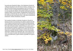 paginas-desde161012-hayedo-tejera-negra-4