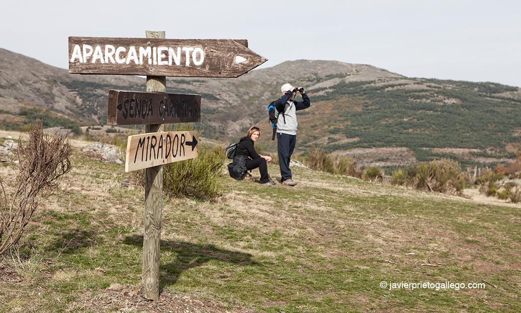 Pradera de Mattarredonda en la Senda de las Carretas. Parque Natural Hayedo de Tejera Negra. Cantalojas. Guadalajara. Castilla-La Mancha. España. © Javier Prieto Gallego