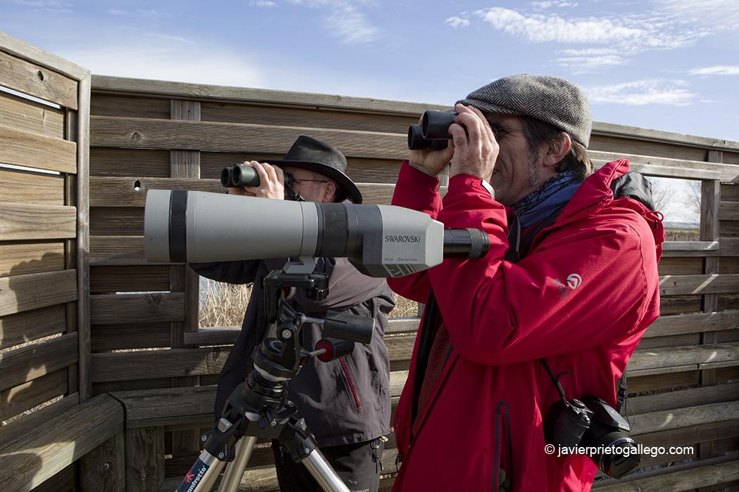 Ornitólogos en uno de los observatorios de la Laguna de la Nava. Palencia. Castilla y León. España © Javier Prieto Gallego;