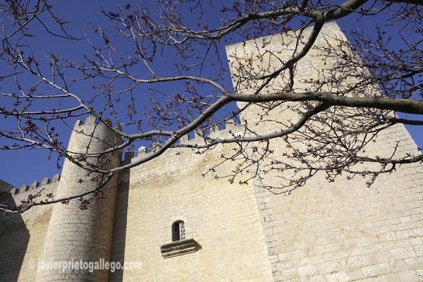 Castillo de Montealegre. Valladolid.Castilla y León. España. © Javier Prieto Gallego