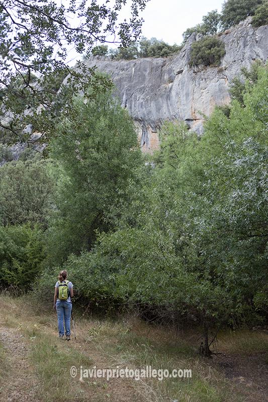 Pequeño desfiladero del río Izana entre Las Cuevas de Soria y Villabuena. Soria. Castilla y León. España © Javier Prieto Gallego