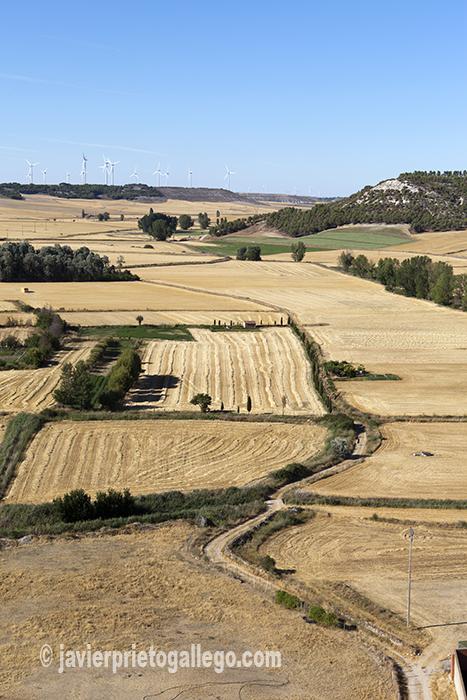 El valle del Hornija desde el castillo de Torrelobatón. Valladolid. Castilla y León. España © Javier Prieto Gallego