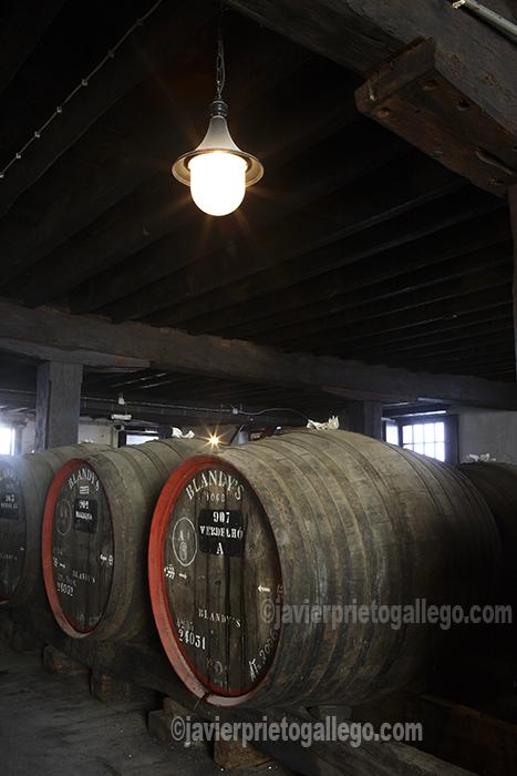 En los siglos pasados el vino constituyó uno de los puntales de la economía de la isla. Visita a la bodega de la Madeira Wine Company. Bodegas de San Francisco. Old Blandy Wine Lodge. Funchal. Madeira. Portugal. © Javier Prieto Gallego