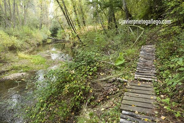 """Sendero señalizado """"La Senda de los Pescadores"""", en las proximidades de Cuéllar. Río Cega. Segovia. Castilla y León. España. © Javier Prieto Gallego"""