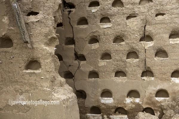 Horacas o nidales de un palomar hundido. Construido en 1885. Localidad de Santoyo. Tierra de Campos. Palencia. Castilla y León. España. © Javier Prieto Gallego