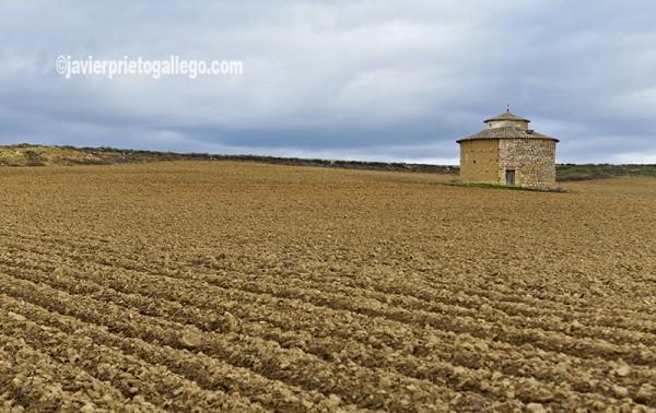 Palomar. Localidad de Támara.Tierra de Campos. Palencia. Castilla y León. España. © Javier Prieto Gallego