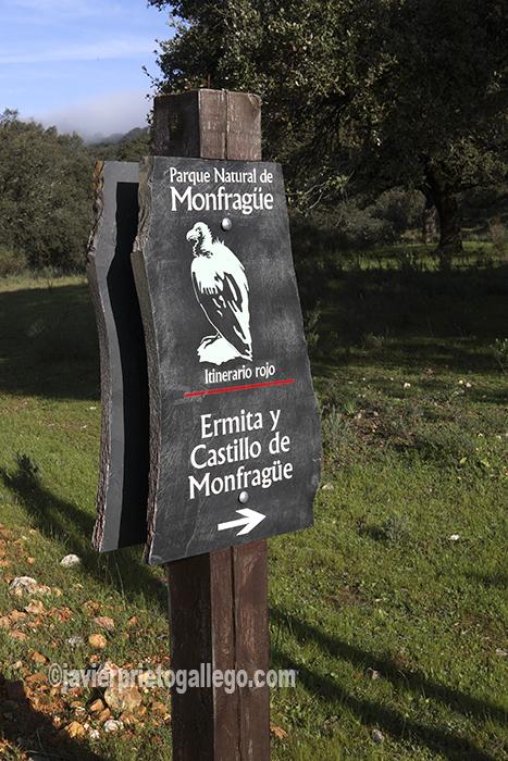 Unos aficionados observam aves en el Parque Nacional de Monfragüe. Cáceres. Extremadura. España.© Javier Prieto Gallego