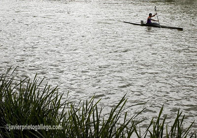 Un piragüista entrena en la aguas del Pisuerga a su paso por Valladolid. [Valladolid. Castilla y León. España. © Javier Prieto Gallego]