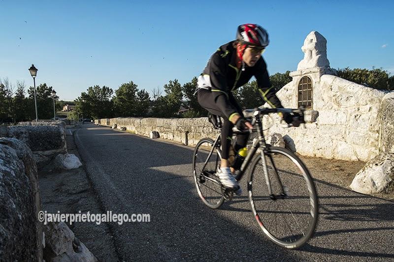 Un ciclista pasa sobre puente medieval de Simancas que salva las aguas del Pisuerga. [Simancas. Valladolid. Castilla y León. España. © Javier Prieto Gallego]