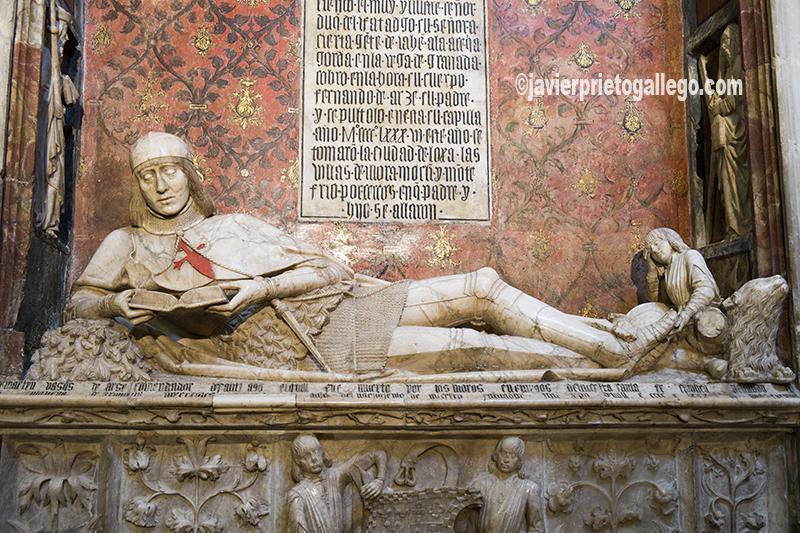 Estatua del doncel, en la capilla de Santa Catalina de la catedral de Sigüenza.Tumba del joven Comendador Martín Vázquez de Arce fallecido en la batalla de la Acequia Gorda durante la toma de Granada en 1486. Es famosa tanto por la bella y delicada factura realizada por un autor anónimo en alabastro, como la excepcional pose del difunto en posición semiyacente, no dormido, sino leyendo embelesado un libro. Está considerada una de las más bellas y originales del arte renacentista funerario español. Guadalajara. Castilla-La Mancha. España. © Javier Prieto Gallego
