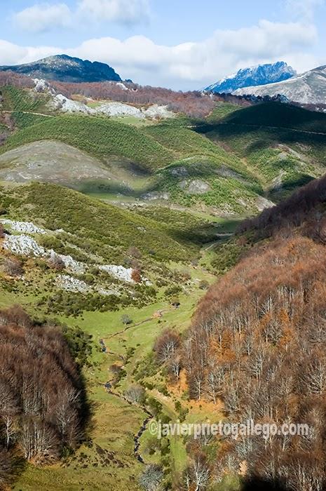 Valle de Támbado. Ruta de la Cervatina. Parque Regional de Picos de Europa. Puebla de Lillo. León. Castilla y León. España. © Javier Prieto Gallego