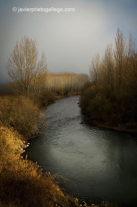 Río Pisuerga. Olleros de Pisuerga. Palencia. Castilla y León. España © Javier Prieto Gallego