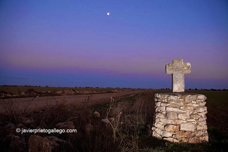 Cruz de la Muñeca, en los páramos de Antigüedad. Cerrato Castellano. Palencia. Castilla y León. España © Javier Prieto Gallego