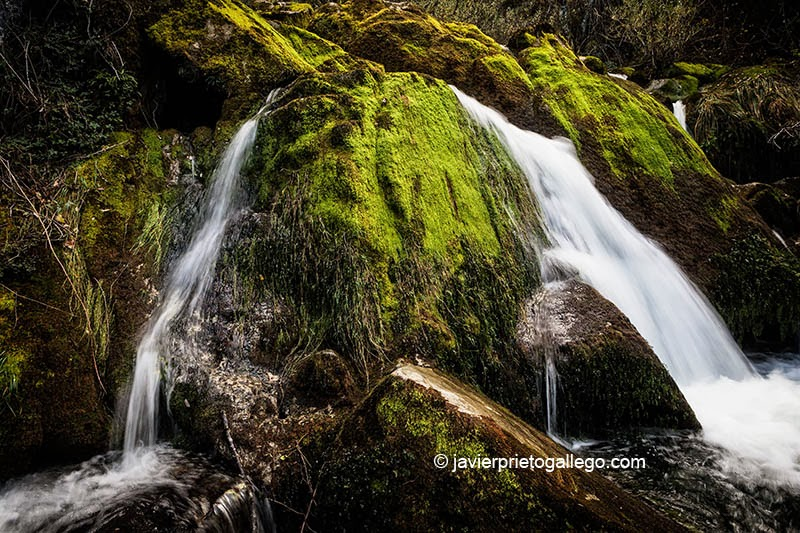 Nacimiento del río Cadagua. Localidad de Cadagua. Valle de Mena. Merindades. Burgos. Castilla y León. España. © Javier Prieto Gallego;