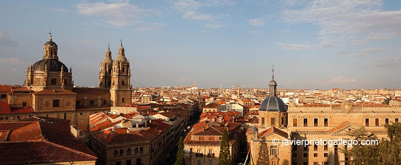 Vista de la Clerecía y la ciudad de Salamanca desde las torres de la catedral. Salamanca. Castilla y León. España © Javier Prieto Gallego