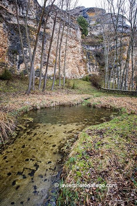 El Manadero. Lugar donde nace el río Aguisejo. Grado del Pico. Comarca de Ayllón. Segovia. Castilla y León. España. © Javier Prieto Gallego