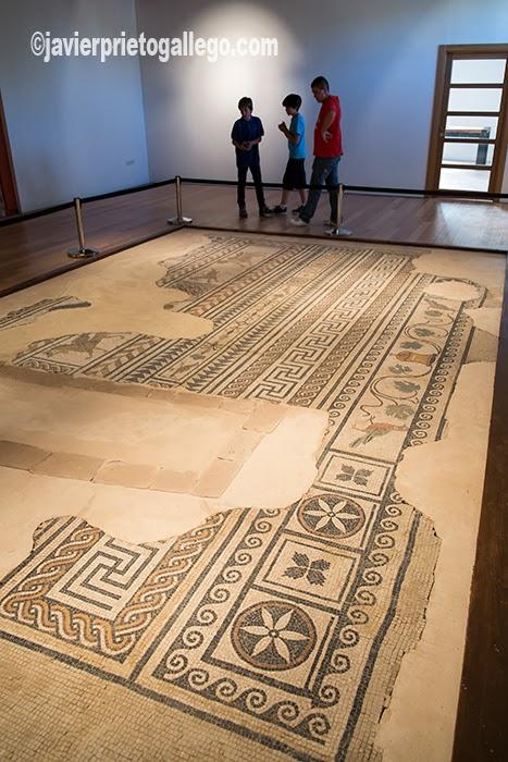 Mosaico romano encontrado en una calle de Medinaceli y que se expone en el palacio Ducal de Medinaceli. Soria. Castilla y León. España. © Javier Prieto Gallego