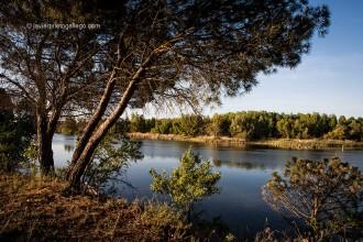 El Duero en los alrededores de Toro. Camino a Santiago del Levante. Zamora. Castilla y León. España. © Javier Prieto Gallego